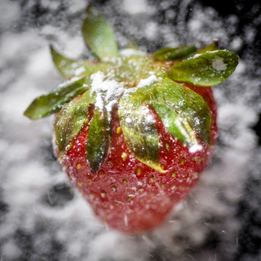 strawberry with powdered sugar
